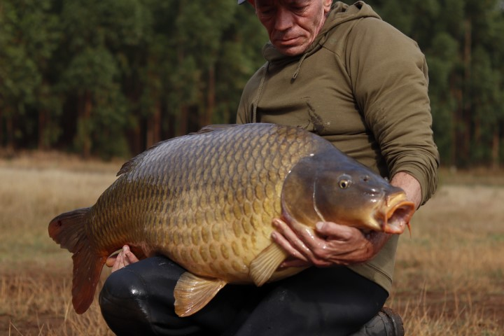 how to, wefish, south africa, johannesburg damn, water, river, hot spot, spots, sportcarp, grass carp, angler, fisher, fish, catch, big fish, massive, huge, amazing, best, wefish, wefish.co.za, free fishing content, best fishing news, sessions, insession,