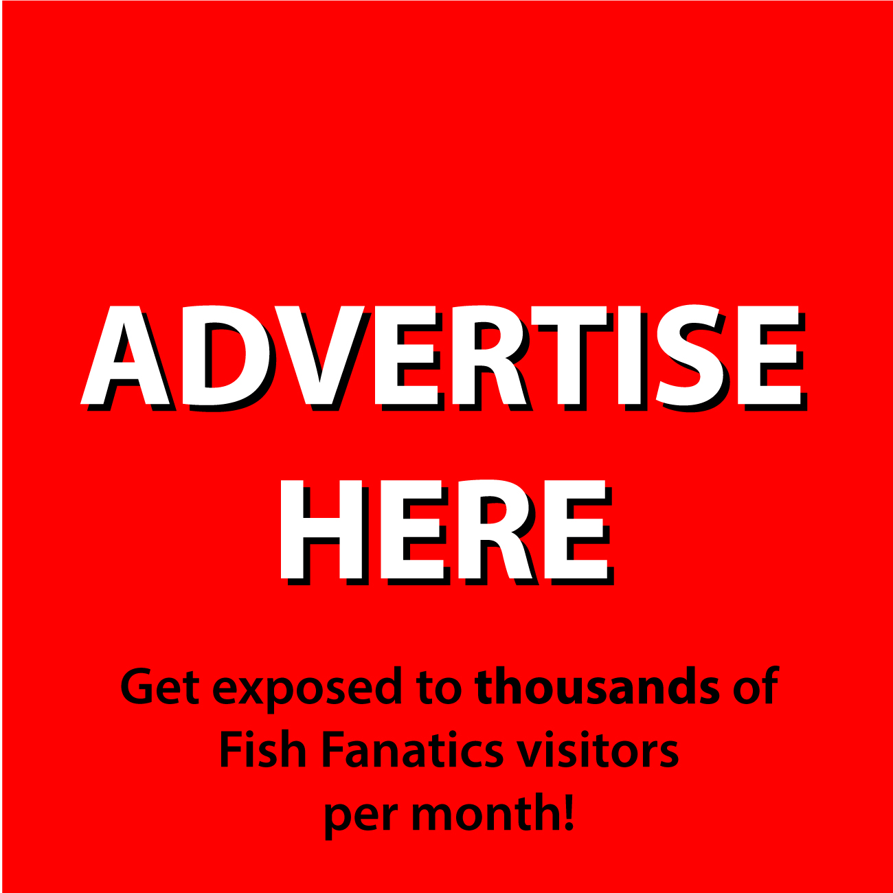 advertise, fishing, website, capr, angler, wefish, business, profit, earn, income, online,