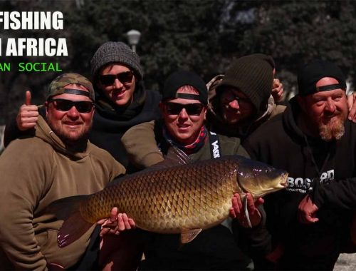 carp fishing south africa, wefish